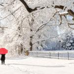 Person with umbrella snow