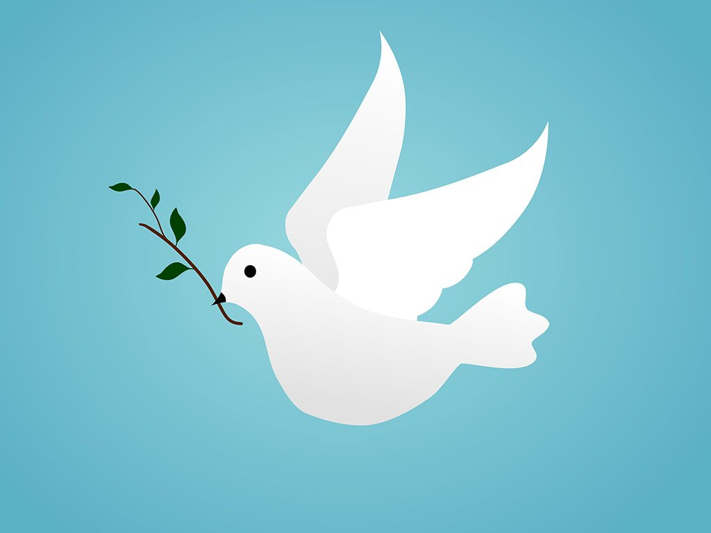Dove - symbol of finding peace