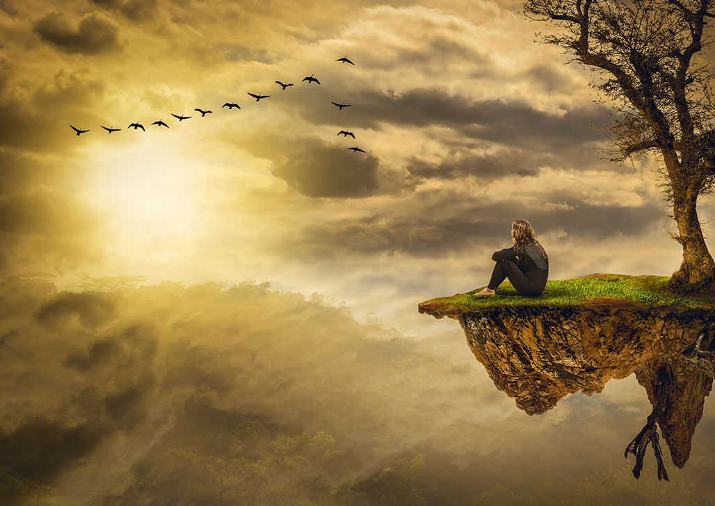 Man sitting on a tree island watching a flight of birds