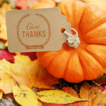 Pumkin and Give Thanks