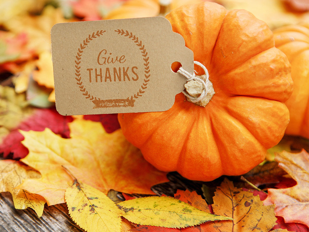 3 Ways To Feel Good on Thanksgiving No Matter What  –
