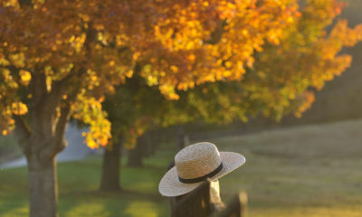 Woman with hat in autumn forrest