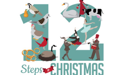 12 Steps of Christmas