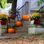 holiday boundaries keep gatherings peaceful