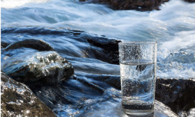 Glass of water in a mountain stream