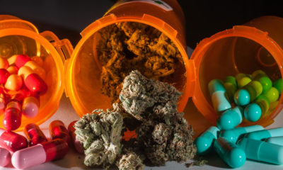 marijuana in pill bottle