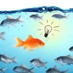 Goldfish with bright idea