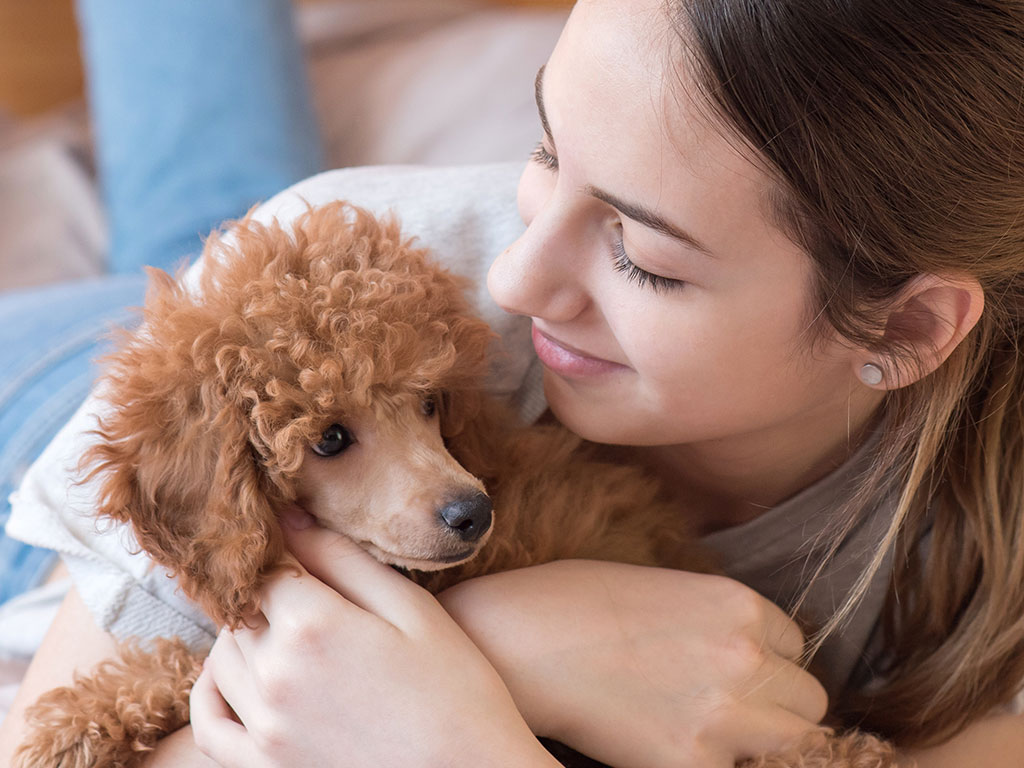 mental health tips include puppy love