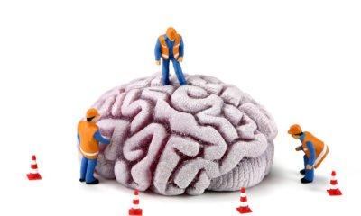 Cartoon workmen on brain