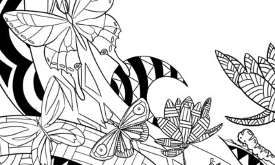 Coloring book Step 12