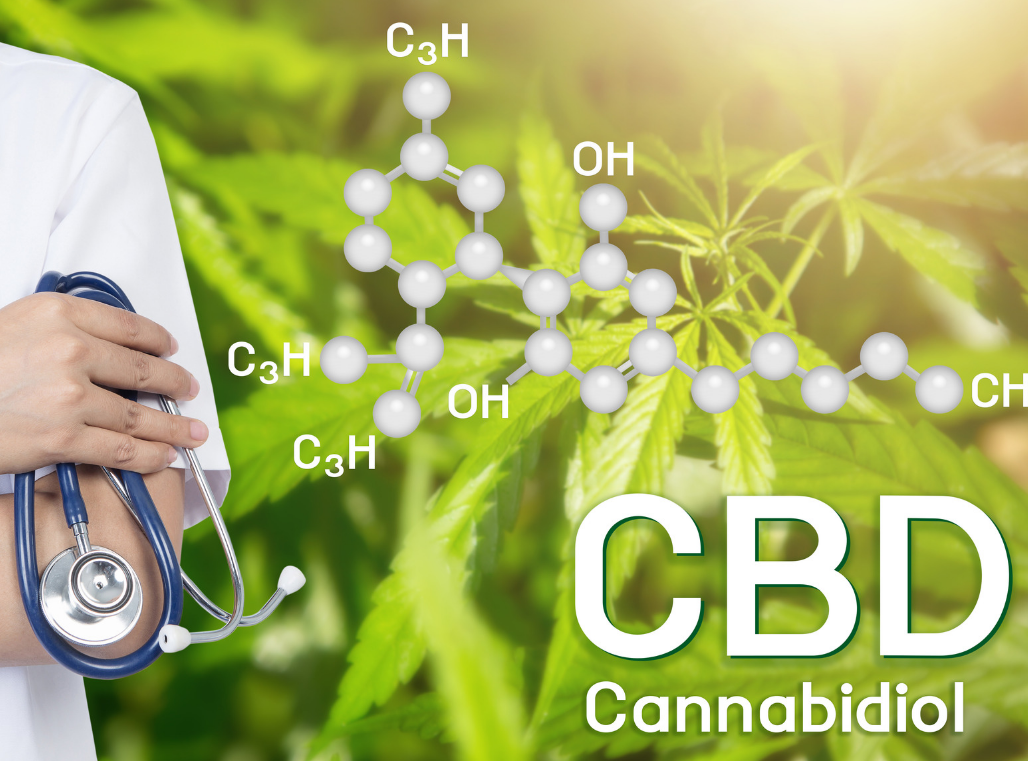CBD Oil Is Everywhere, But Is It Really Safe and Healthy?  –