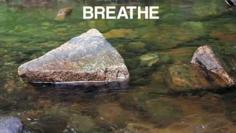 Mini Mind Break at a Stream