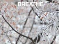 Mini Mind Break in the Snow
