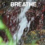 Break at the Waterfall