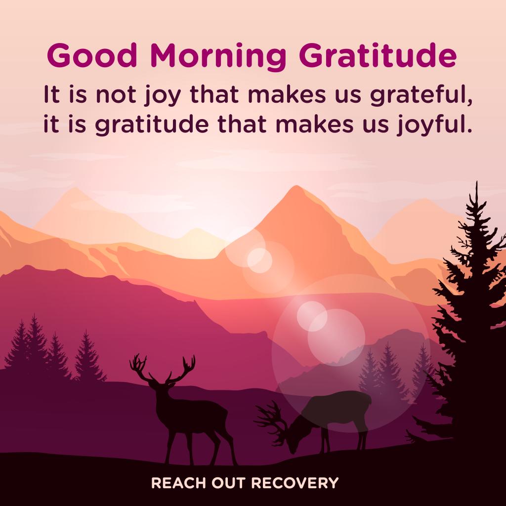 Good morning Gratitude joy