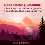 Good morning Gratitude joy