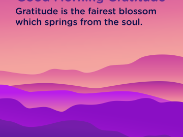 Good morning Gratitude blossom