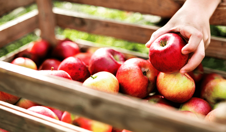 5 Ways to Add Apples to Your Next Meal