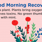 Good Morning Recovery plants