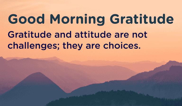Choose Gratitude For A Better Attitude