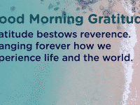 Gratitude changes your life experience