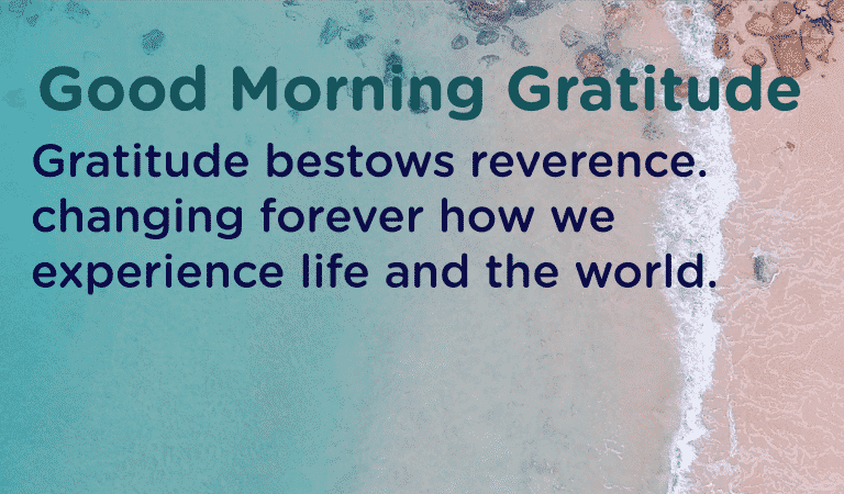 How Gratitude Changes Your Life Experience