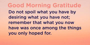 Good morning Gratitude spoil