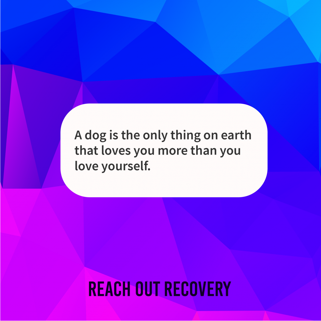 Your best recovery buddy