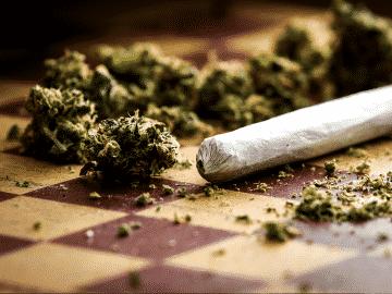 Marijuana's effects