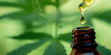 what is CBD Oil