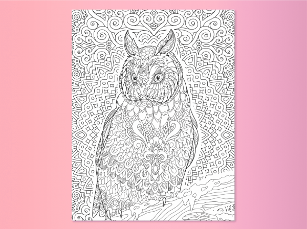 Owl coloring page in Find Your True Colors