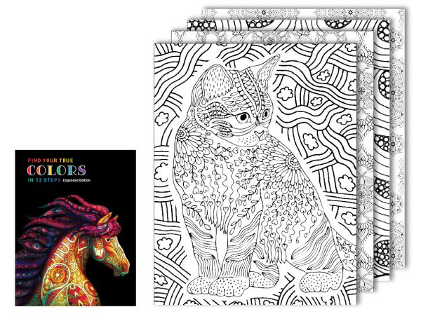 downloadable coloring and workbook steps 1 and 2