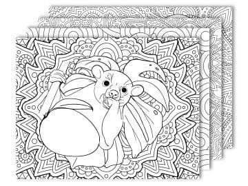 kinkajou coloring pages